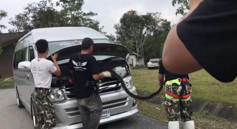 4 Meter King Cobra Crawls Into Schoolbus In Thailand