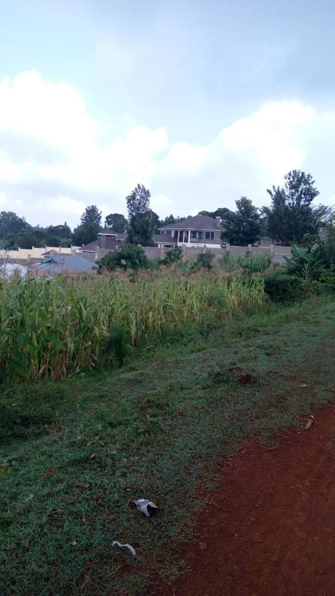 Photos of Kisii Governor James Ongwae's palatial home