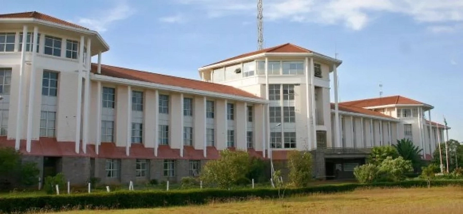 Moi University Courses Offered: from Certificate to Postgraduate