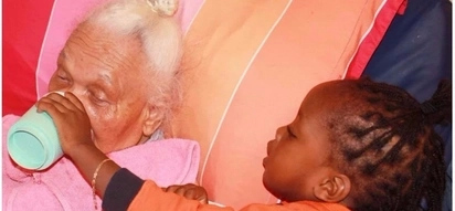 Heartwarming! Woman lovingly cares for her aging grandmother with help from her son
