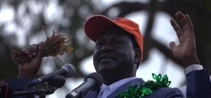 Raila aahidiwa miti 1,000 ya Miraa akiwa atakoma kumsumbua Uhuru