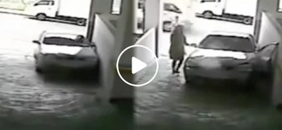 Hilarious female driver wrecks car trying to park