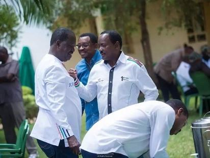 Viongozi wa NASA wamtaka Raila kusitisha mipango yake ya kuapishwa