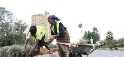 VIDEO: Kidero Grass Being Uprooted After Obama Trip