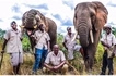 Elephant that may have held a grudge at being mistreated kills his handler
