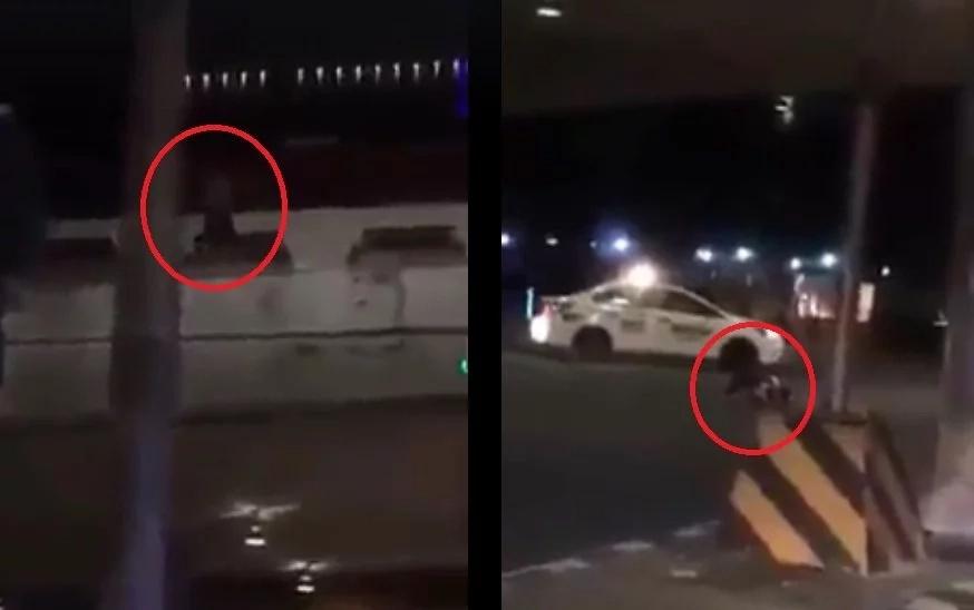 Suicidal man jumps off Metro Manila Skyway