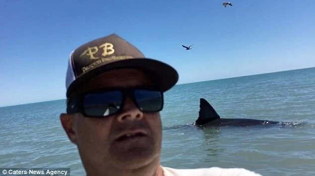 Pearson even takes a selfie with the shark in the background