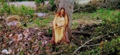 Estos pobladores cortarón un árbol y un milagro apareció ante sus ojos