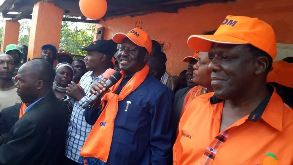 Raila Odinga urges police to go after criminals not brewers