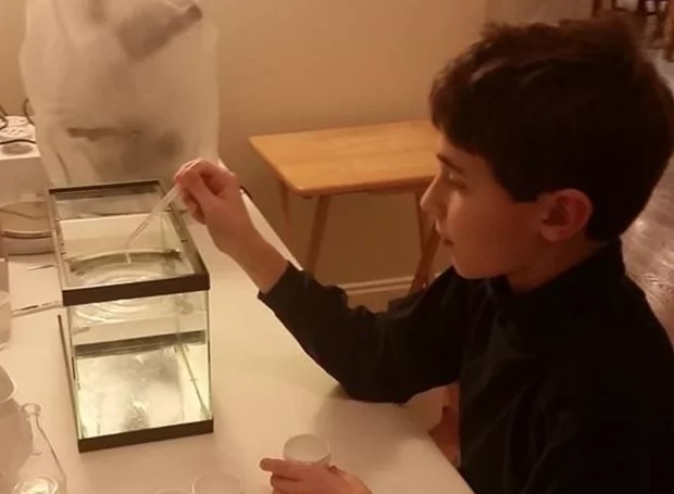 Genius! A 12-year-old 7th grader discovers CANCER VACCINE in green tea (photos)
