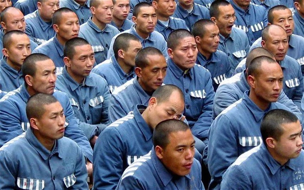 100,000 prisoners executed anually in China