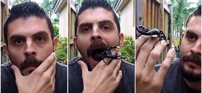 Scary! Man opens his mouth to reveal his pet scorpion before it crawls out