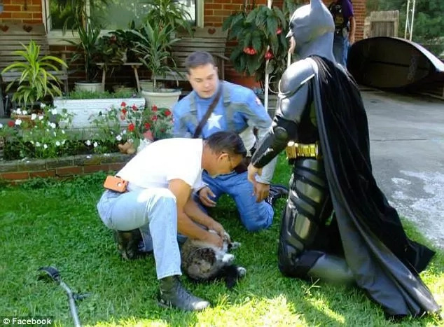 Nothing To Watch, Just Batman and Captain America Rescue Cat FOR REAL(Video)