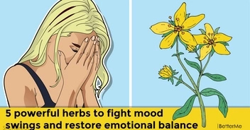 5 powerful herbs to fight mood swings and restore emotional balance