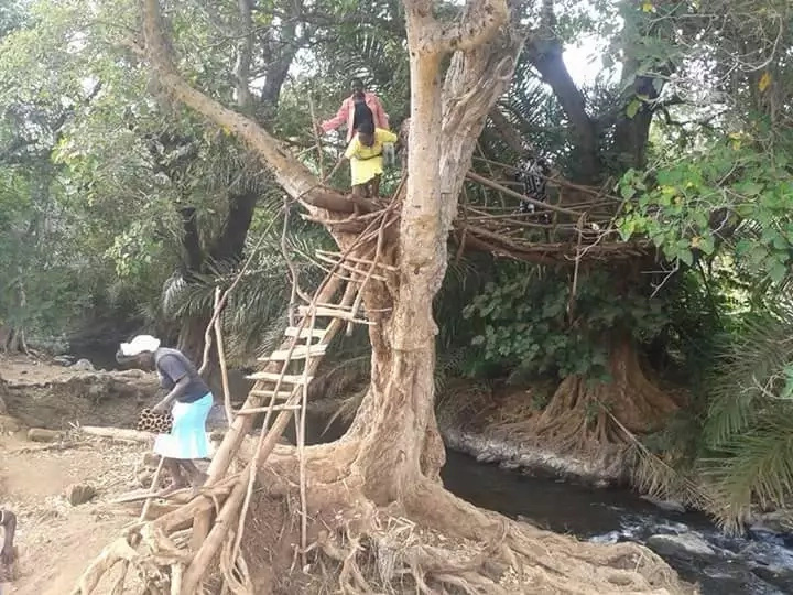 Here is the most dangerous bridge in Tharaka Nithi county