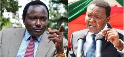 Kalonzo Musyoka goes rogue, serves Alfred Mutua a hot bowl of shade