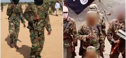 Al-Shabaab wanted to kill their leader before he surrendered to the government