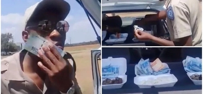 Traffic cops are filmed 'eating money' - but now face disciplinary hearing
