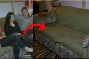 These students bought old sofa, then they found inside THIS (photo, video)