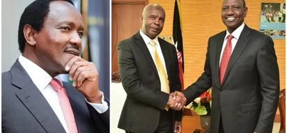 Kivutha Kibwana aonekana na Ruto muda baada ya kudokeza anamtema Kalonzo