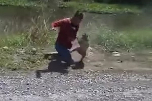 Man gets into a hilarious fight with a monkey for peeing on his motorcycle