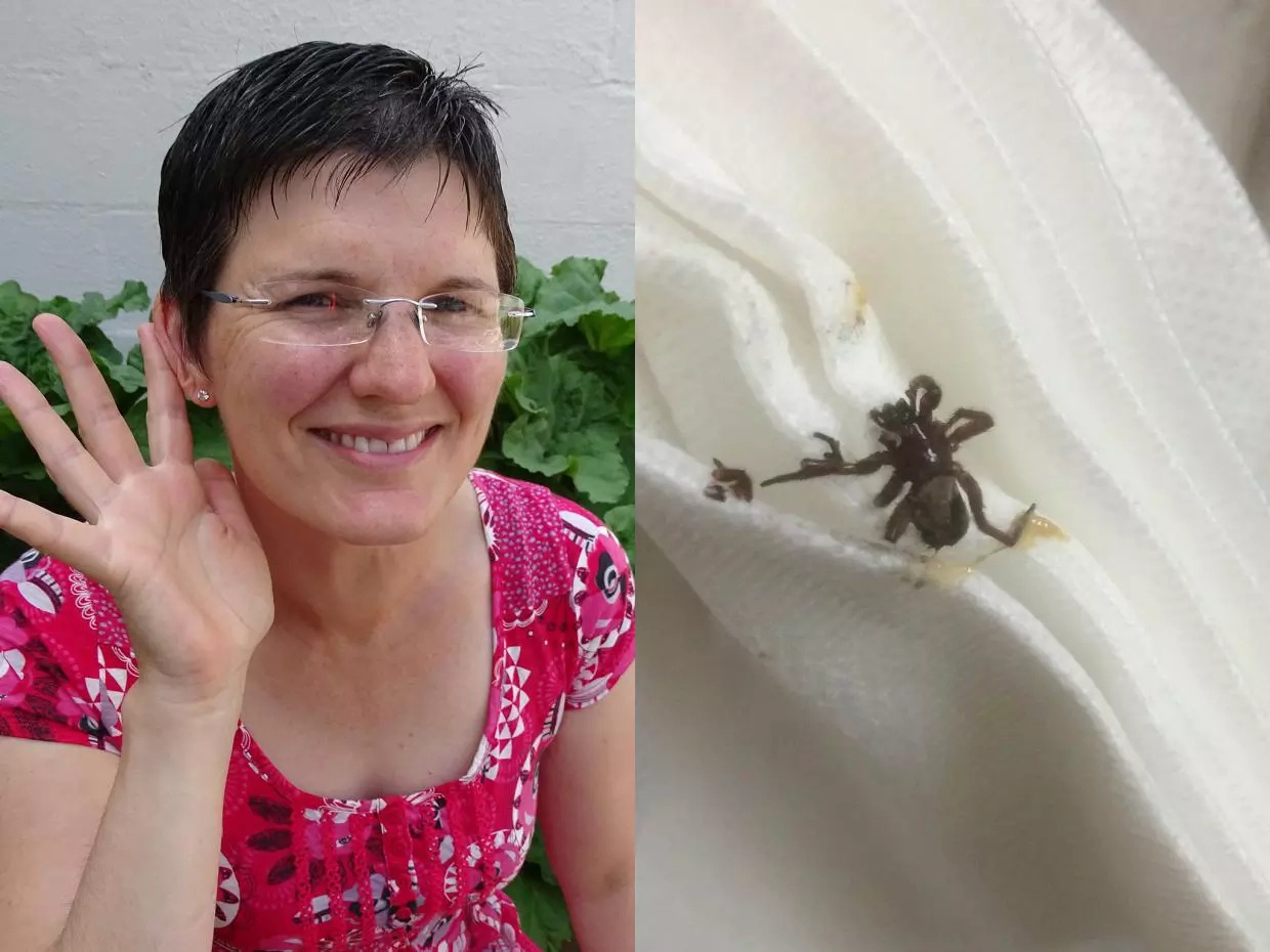 Woman finds live spider in her ear after swimming incident