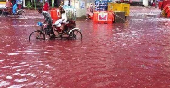 ¿Por qué estos ríos parecen regados de sangre?...¡porque lo están!