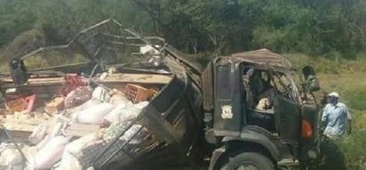 14 killed in grisly accident involving police lorry