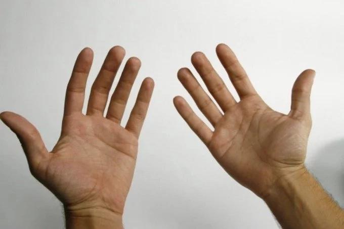 linea en la mano