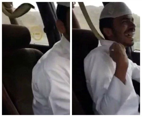 Men Criticized For Dangerous Stunt With Snake While Driving