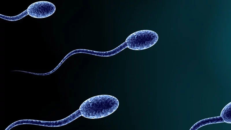 How your mobile phone is affecting your sperm count