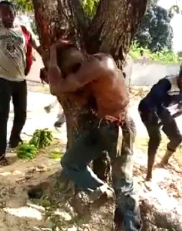 Man SAVAGELY BEATEN by residents while tied to a tree (video)