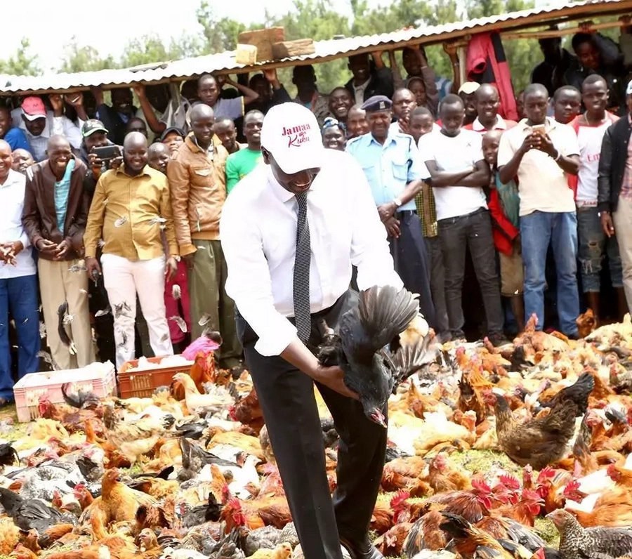 What Kenyans had say about DP Ruto's chicken stunt