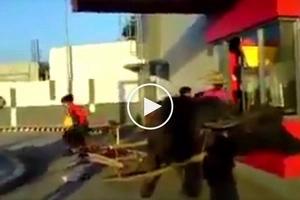 Hilarious video shows hungry Pinoys riding carabao ordering food at Jollibee's drive-thru