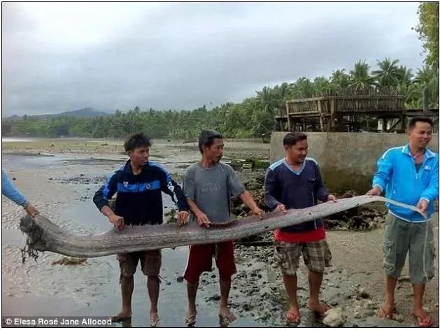 LINDOL dapat bang asahan sa PILIPINAS? Kakaibang lamang dagat na may habang 30 feet senyales daw!