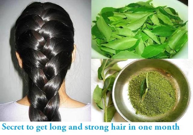 Una hierba que puede darte cabello largo y fuerte en sólo un mes
