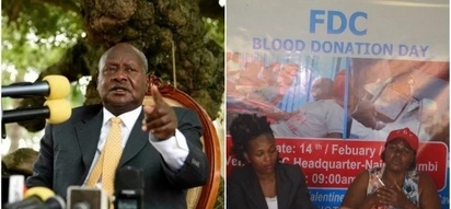 Museveni's govt angers Ugandans after blocking Uganda's opposition blood donation drive