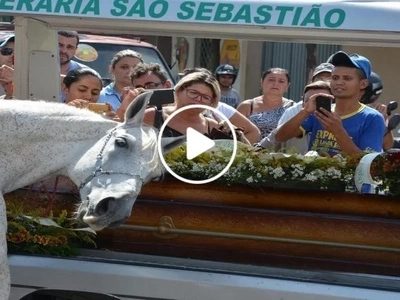 Heart-wrenching video shows emotional horse breaks down upon seeing its dead owner's coffin