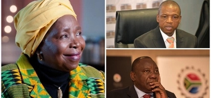 Nkosazana Dlamini-Zuma leads government intervention into North West chaos