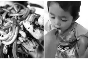 Creepy! Video of mother feeding her baby live WORMS sparks angry debate online (photos,video)