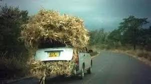 Hilarious photos which define a Toyota Probox in Kenya