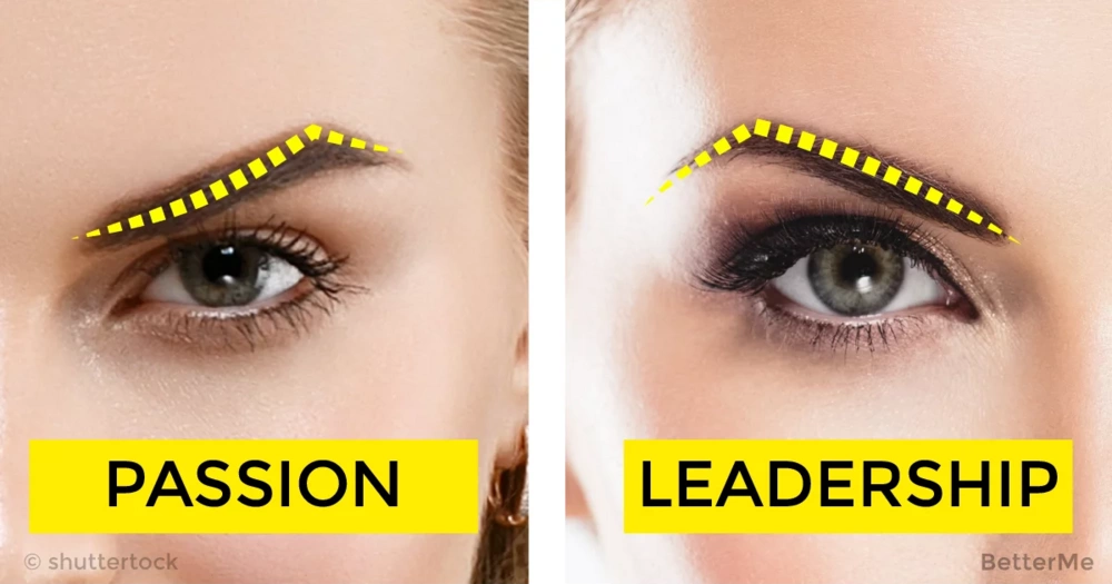 What your eybrows shape can tell about your temperament