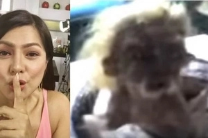 Alice Dixson finally speaks up on the snake man in Robinson's Galleria