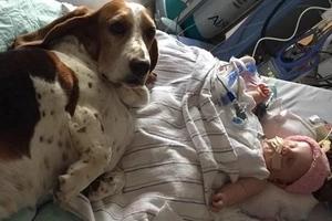 Una madre escribe una emotiva carta por la muerte de su bebé de cinco meses