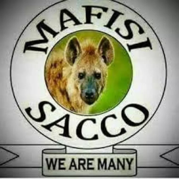 Female journalist angry with Team Mafisi's group after leaking nudes