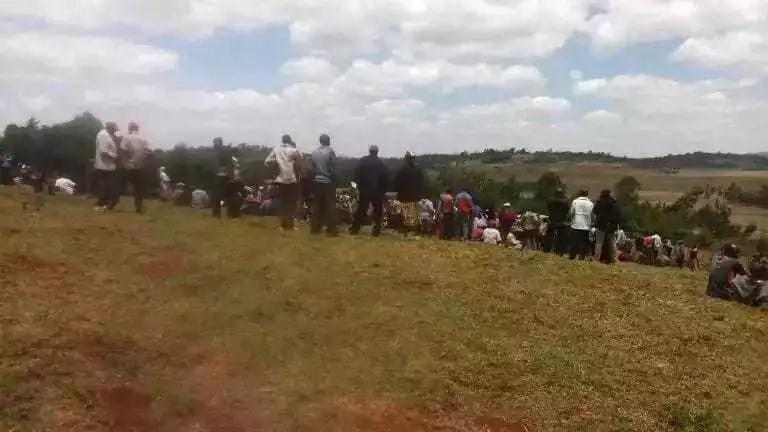 Kisa cha NYOKA HAI tumboni mwa ng'ombe chawashangaza wakazi