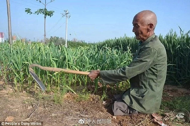 Despite his disability, Xi works the farm