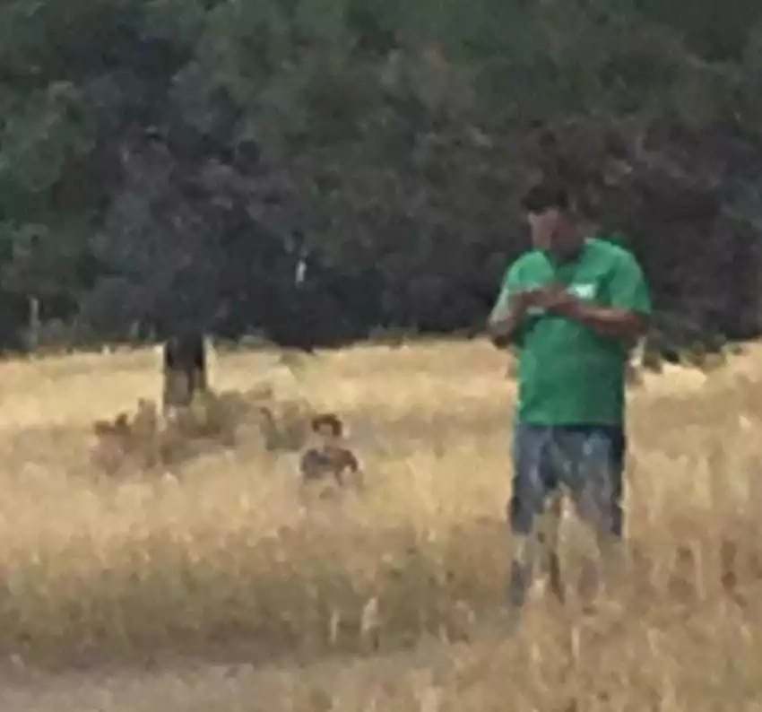 She Sneaks A Photo Of Dad, But Doesn't Realize There's A Creepy Figure In The Grass