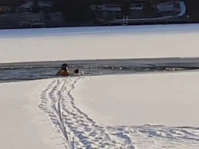 Poor Puppy Fell Through Ice on Lake, Then Firefighters Came... (Video)