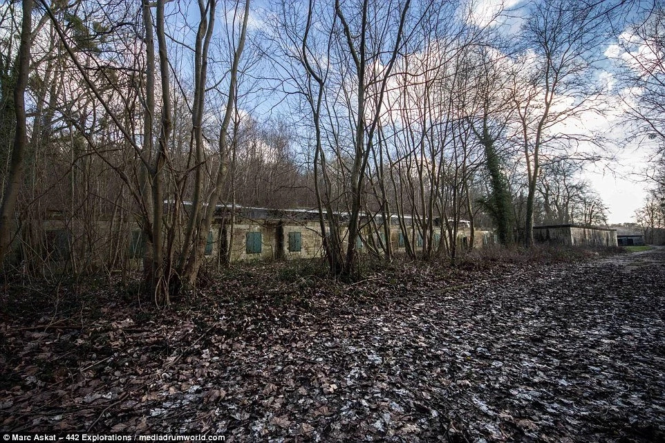 Young photographer found an abandoned bunker in a thick forest. Then he realized that he is the only person who entered inside for the past 70 years.